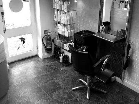 Hbs Hairdressing Salon - Image 4